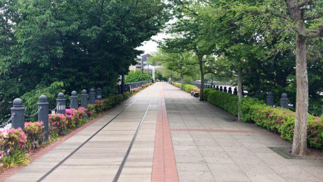 今日歩いた汽車道です